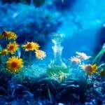 agua astral